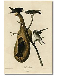 Imprimé toile d'art Violet Martin par collection Vintage Apple avec cadre étiré