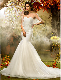 Lanting Fit & Flare Plus Sizes Wedding Dress - Ivory Court Train Sweetheart Tulle