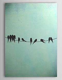 Allongé Oiseaux d'art de toile sur un fil par Thelma hiver