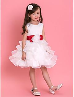 Robe - Blanc Soirée formelle/Fête de mariage/Vacances Mode de bal Col ras du cou Longueur genou Tulle