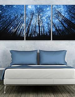 전자 home® 주도 뻗어 캔버스 인쇄 예술의 숲과 하늘에 플래시 효과는 3 세트 주도