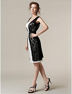 retour au genou dentelle / tronçon robe de demoiselle d'honneur - gaine d'ivoire / colonne bretelles