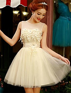 Homecoming/Holiday Dress A-line Jewel Short/Mini Tulle Dress