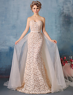 Formal Evening Dress - Champagne Trumpet/Mermaid Strapless Chapel Train Lace / Tulle / Charmeuse
