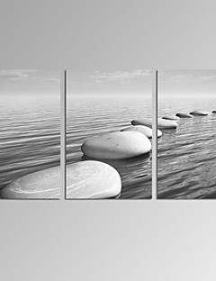 VISUAL STAR®Stretched Black and White Seascape Canvas Print Beach Landscape Wall Art Ready to Hang