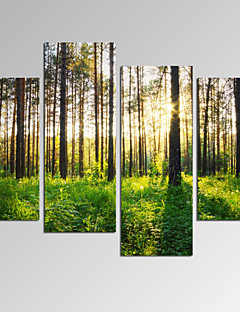 Abstrait / Fantaisie / Loisir / Paysage / Photographie / Moderne / Romantique / Pop Art Toile Quatre Panneaux Prêt à accrocher,Format