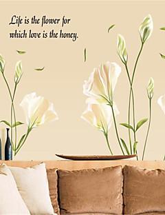 보태니컬 / 로맨스 / 정물화 / 패션 / 플로럴 / 풍경 / 판타지 벽 스티커 플레인 월스티커 데코레이티브 월 스티커,PVC 자료 이동가능 홈 장식 벽 데칼