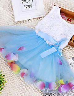 bebê Vestido,Casual Floral Raiom-Verão