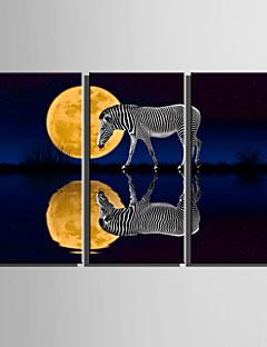 Animal / Paysage Toile Trois Panneaux Prêt à accrocher,Format Vertical