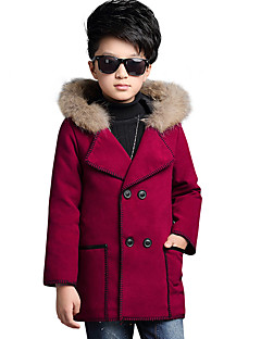 Boy's Casual/Daily Print Down & Cotton Padded,Polyester Winter / All Seasons / Spring / Fall Brown / Green / Red