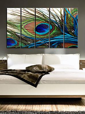 conjunto lienzo de 5 plumas bodegón de pavo real lienzo envuelto listo para colgar