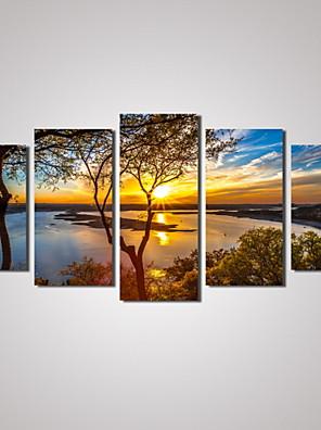 Tempo libero / Paesaggio / Botanical / Fotografia / Romantico / Viaggi Print Canvas Cinque Pannelli Pronto da appendere , Orizzontale