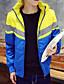 コート レギュラー パッド入り メンズ,カジュアル/普段着 ソリッド コットン ポリエステル-シンプル 長袖 フード付き