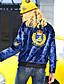 Polyester / Spandex Blå Langermet,Høy krage Jakke Broderi Vintage / Sofistikert Ut på byen / Fritid/hverdag / Ferie-Høst / Vinter Dame