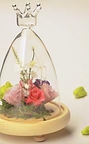 tabellen center DIY terrarium / krone glassdekselet bord deocrations (planter ikke inkludert)