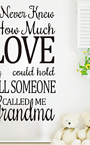 Wall Stickers Wall Decals , How Much Love English Proverbs  PVC Wall Stickers