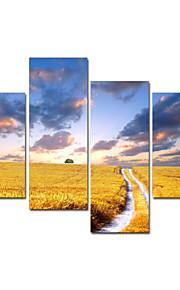 visuell star®wheat naturliga sträckta canvas utskrift för heta försäljning