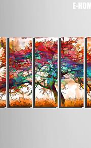e-Home® venytetty kankaalle art värikäs puu koriste maalaus sarja 5