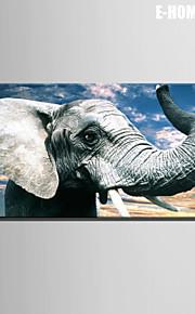 전자 home® 캔버스 아트 코끼리 장식 한 개를 그림 뻗어