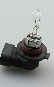 høj kvalitet 9005 12v 65W bil halogenlampe