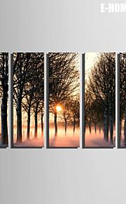 e-Home® sträckta canvas konst solnedgången leden genom skogen dekorativt måleri uppsättning av 5