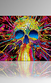 VISUAL STAR®2015 New Arrival Abstract Skull Canvas Printing For Living Room Unique Wall Art