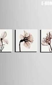e-home® strukket lerret kunst transparente blomster dekormaling sett med 3