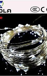 10m 100LED DC12V chaîne de fée des lumières mariage de noël noël partie décoration.