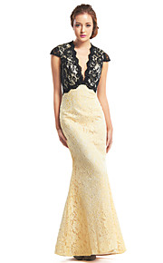 TS Couture® Formal Evening Dress - Multi-color Trumpet/Mermaid V-neck Ankle-length Lace