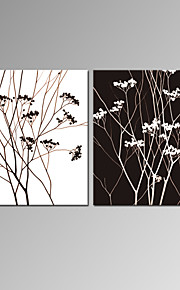 VISUAL STAR®Black and White Lucky Tree Canvas Prints with Wood Frame Ready to Hang