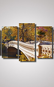 Vrije tijd / Landschap / Botanisch / Fotografisch / Romantisch / Reizen Canvas Afdrukken Vijf panelen Klaar te hangen , Horizontaal