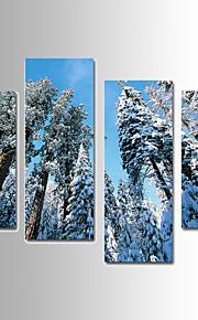 Landskap / Botanisk Canvastryck Fyra paneler Redo att hänga,vilken form som helst