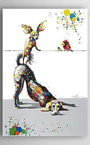 håndmalte oljemaleri dyr hund leke med fugler med strukket ramme 7 veggen arts®