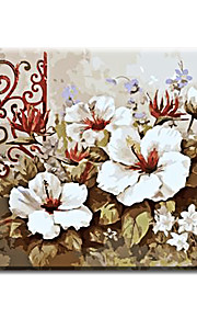Hand Painted Oil Painting Floral Flower with Frame