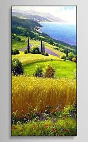 Håndmalte Landskap / fantasi / Abstrakte Landskap olje~~POS=TRUNC malerier~~POS=HEADCOMP,Moderne / Klassisk / Parfymert / Europeisk Stil