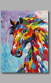 Håndmalte Dyr / Pop olje~~POS=TRUNC malerier~~POS=HEADCOMP,Moderne Et Panel Lerret Hang malte oljemaleri For Hjem Dekor