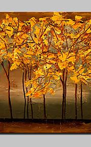 Peint à la main Nature morte / A fleurs/Botanique Peintures à l'huile,Modern Un Panneau Toile Peinture à l'huile Hang-peint For