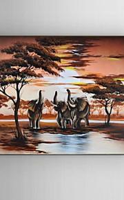 Håndmalte Landskap / Dyr / fantasi / Abstrakte Landskap olje~~POS=TRUNC malerier~~POS=HEADCOMP,Klassisk / Parfymert / Europeisk Stil /