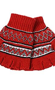 Winter koreansk versjon av strikket votter (kvinnelige par avsnitt refererer til blandet gruppe med en pakke med tre par)
