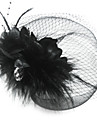 Women\'s Feather Tulle Headpiece-Special Occasion Birdcage Veils