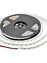 ZDM ™ 120w 2 × 5m 600x5050 smd kallt vitt ledde remsor ljus (12V)