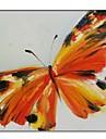Pictate manual panza pictura fluture cu cadru întins Gata de Hang
