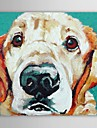 IARTS®Oil Painting Animals Pets Dog with Stretched Frame Hand-Painted Canvas