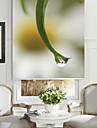 feuilles de style botanique&petite fleur toile a rouleau