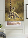 skissartade djur giraffer familj valsen nyans