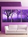 e-FOYER etire conduit impression sur toile art arbres pourpres effet flash LED SET de 3