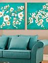 e-home® esticada arte flores lona set pintura decorativa de 2