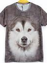 T-Shirts ( Coton melange ) Informel/Travail Rond a Manches courtes