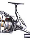 Snurrande hjul 4.9:1 12 Kullager utbytbarSjöfiske Kastfiske Isfiske Spinnfiske Jiggfiske Färskvatten Fiske Andra Karpfiske Abborr-fiske