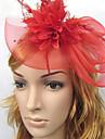 Dame Fjaer / Linfroe / Nett Headpiece Bryllup Pannebaand / fascinators Bryllup 1 Deler
